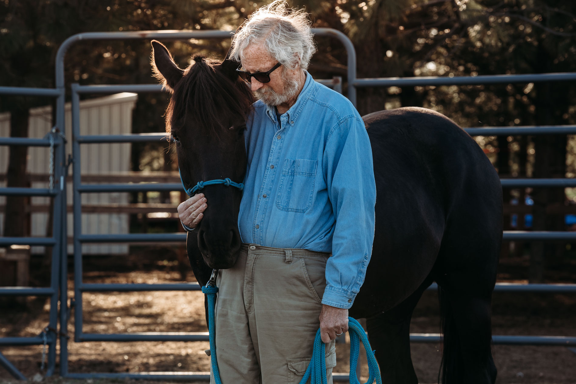 spokane-horse-photographer