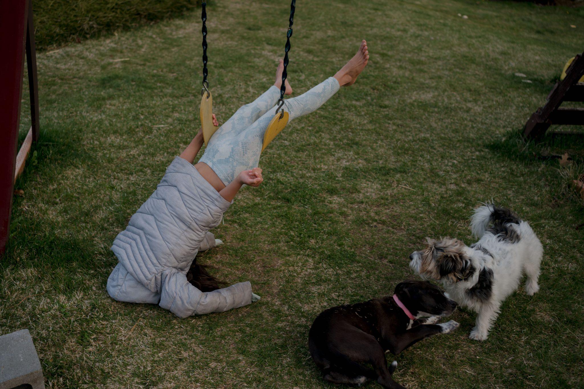 kid stuck on swing dogs watching