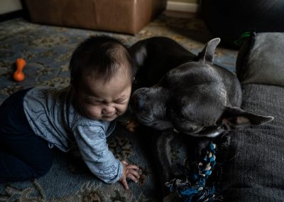 doggy licking baby